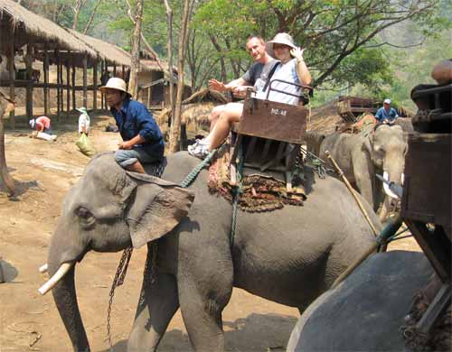 Maesa Elephant Camp: ride — off we go!
