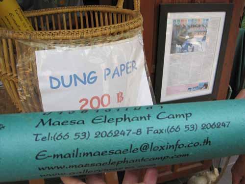 Maesa Elephant Camp: elephant dung paper