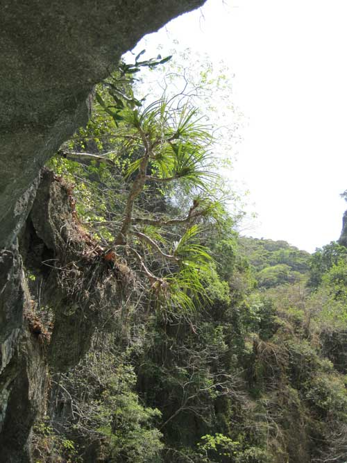 Tham Lod sea cave